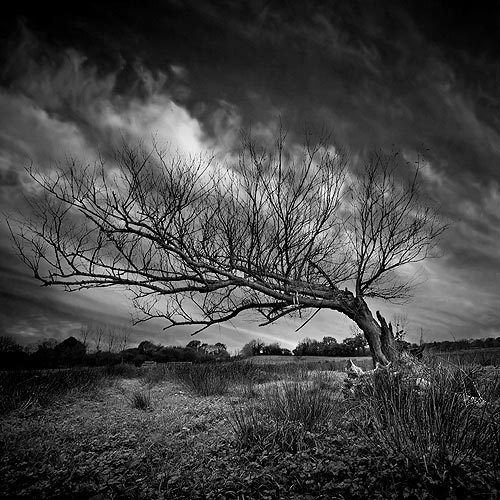 Black and White Photography – A Breathtaking Collection