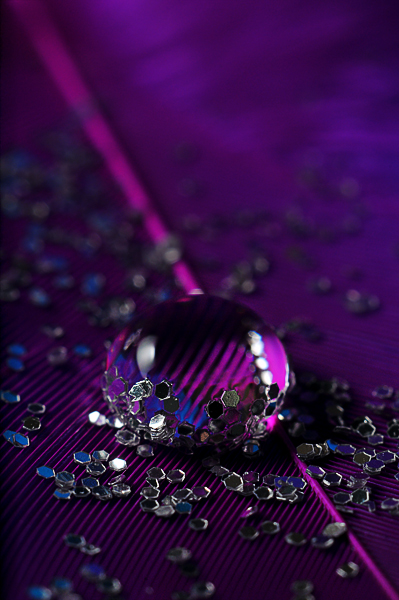 purple water drop photography