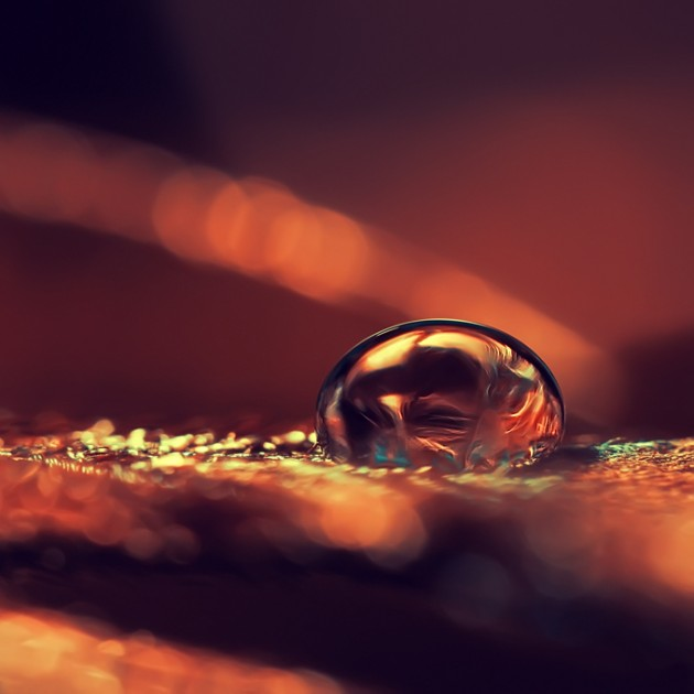 golde water drop photography