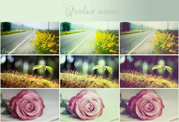 free photoshop Verdant action pack or designers