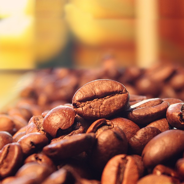 A still life image of coffee beans.