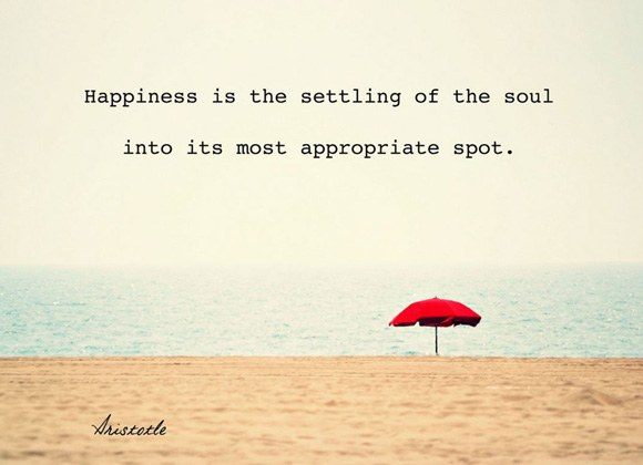 Happiness is the settling of soul into its most appropriate spot