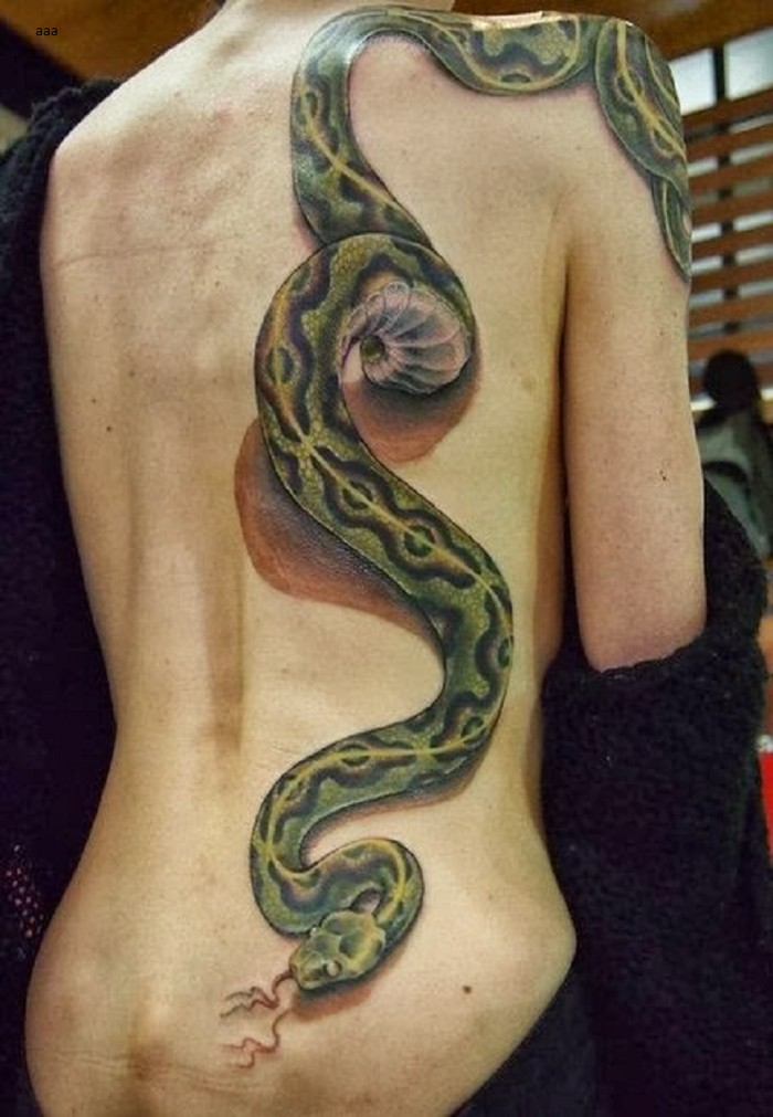Snake on the back